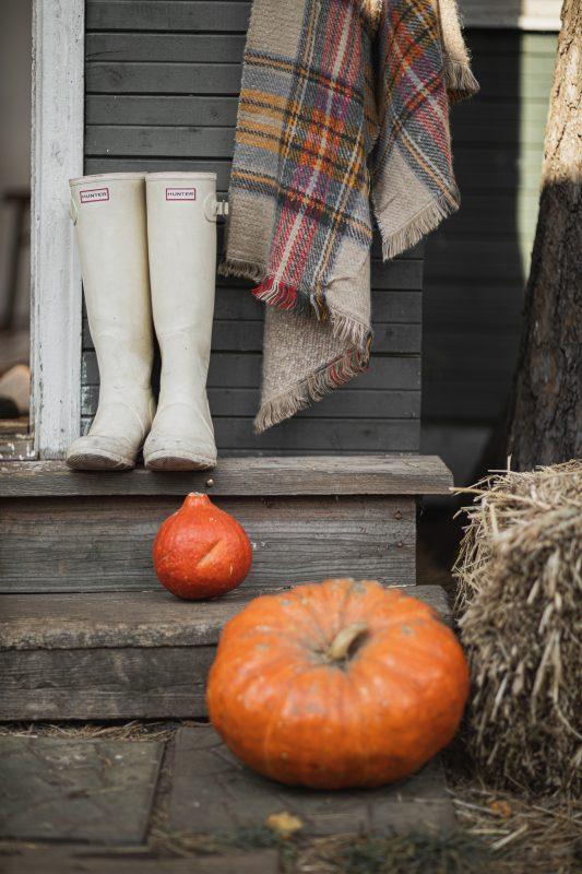Fall Activities in Bozeman